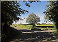 SX4679 : Junction, Heathfield by Derek Harper