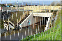 J3673 : Grand Parade culvert, Belfast - January 2015(1) by Albert Bridge