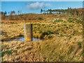 NZ6313 : Westworth Reservoir by Mick Garratt