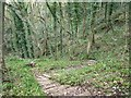 SK0347 : The steep and winding footpath to Foxt by Ian Calderwood