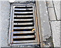 SY6990 : Drain Cover by Nigel Mykura