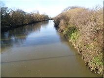 TQ3785 : River Lea seen from Ruckholt Road by Marathon