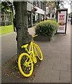SE3055 : Yellow bike, Harrogate by Derek Harper