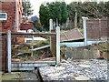 SJ9593 : Storm Damage by Gerald England