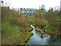 TQ3683 : Ecology area, Mile End Park (3) by Stephen Craven