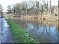 SJ6475 : The Trent & Mersey Canal, semi-frozen at Anderton by Christine Johnstone