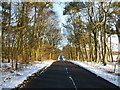NS8258 : Road near Hill of Murdostoun by Alan O'Dowd