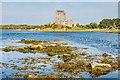 M3810 : Dunguaire Castle by Ian Capper