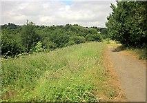 SE0726 : Path by Brackenbed Sports Park by Derek Harper
