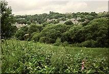 SE0726 : Hebble Brook valley at Wheatley by Derek Harper
