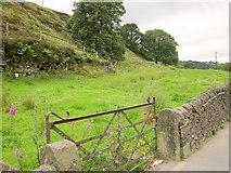 SE0726 : Field by Doctor Hill by Derek Harper