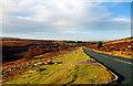 SE8499 : Goathland Moor by Scott Robinson