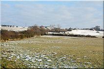 NZ0451 : Lightly snowed field near to Carterway Heads by Trevor Littlewood
