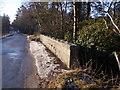 NJ6202 : Upstream bridge parapet by Stanley Howe