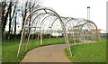 J3675 : Pergola, Victoria Park, Belfast (January 2015) by Albert Bridge