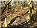 SJ7948 : Bateswood Country Park: steps in wood by Jonathan Hutchins