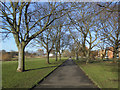TQ4174 : Path in Sutcliffe Park by Stephen Craven