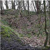 SE2436 : Area of quarrying, Toads Hole Wood, Bramley Fall Park by Rich Tea