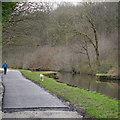 SE2436 : Former swing bridge ?, by Bramley Fall Park by Rich Tea