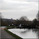 SE2436 : Newlay Locks, Leeds & Liverpool Canal by Rich Tea