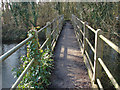 TQ0586 : Footbridge over the River Colne by Alan Hunt