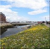 J3731 : Promenade Foot Bridge by Eric Jones