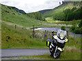 SN8053 : Cwm Tywi west of Cnuwch, Powys by Roger  Kidd
