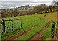 SE4697 : Whitehouse Farm entrance by Scott Robinson