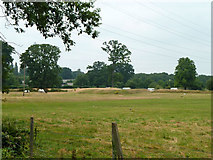 TQ0481 : Former Huntsmoor Park land by Robin Webster