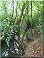 SW8652 : Stream near Winsford by Rod Allday