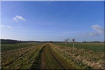 SK9412 : Track through Exton Park by Tim Heaton