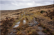 SX6781 : A very soggy Two Moors Way by jeff collins