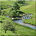 SN8454 : The Afon Irfon north-west of Abergwesyn, Powys by Roger  Kidd