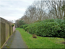 TQ0999 : Path and green area between housing and A41 by Robin Webster