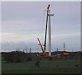 SD4359 : Heysham South wind farm construction by Ian Taylor