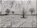 TQ2258 : Epsom: a grassy hilltop at Tattenham Corner by Chris Downer