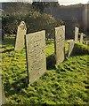 SX1867 : Gravestones, St Neot by Derek Harper