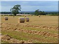 NY5057 : Farmland, Hayton by Andrew Smith
