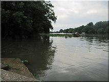 TQ1773 : River Thames by Matthew Chadwick