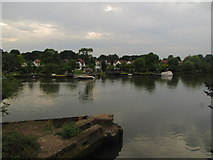TQ1672 : River Thames by Matthew Chadwick