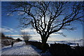 SK1463 : Winter walk on the Tissington Trail by Peter Barr