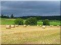 NY5525 : Farmland, Melkinthorpe, Lowther by Andrew Smith