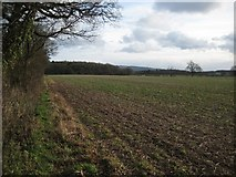 SO8843 : Arable land beside The Belt by Philip Halling