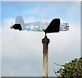 TM1899 : Weather vane in Bracon Ash garden by Evelyn Simak