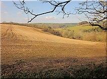 SX2555 : Field by St Martin-by-Looe church by Derek Harper