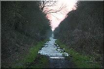 SE9742 : Hudson Way south of Etton by Chris