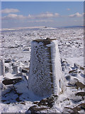 NY6834 : Trig point, Cross Fell, Culgaith by Andrew Smith