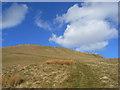 NY6732 : Kirkland Fell, Culgaith by Andrew Smith