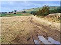 NY5040 : Farmland, Lazonby by Andrew Smith