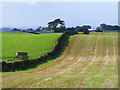 NY5353 : Farmland, Castle Carrock by Andrew Smith